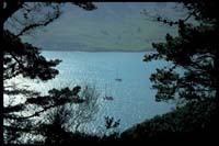 Blick auf Lyttelton Harbour