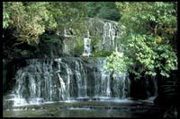 An den Purakaunui Falls