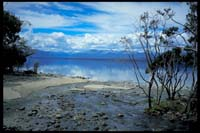 Am Lake Te Anau