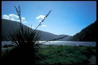 Am Lake Paringa
