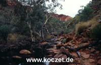 Kings Creek