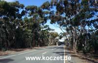 South Coast Road westlich von Vivonne Bay